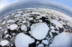 Pianeta Terra:un mondo da salvare.