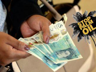 Latte di palma, la UE ne approva l'uso e il commercioLatte di palma, la UE ne approva l'uso e il commercio