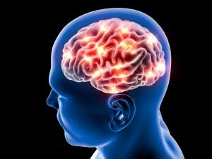 memoria, cervello, sonno, riposo