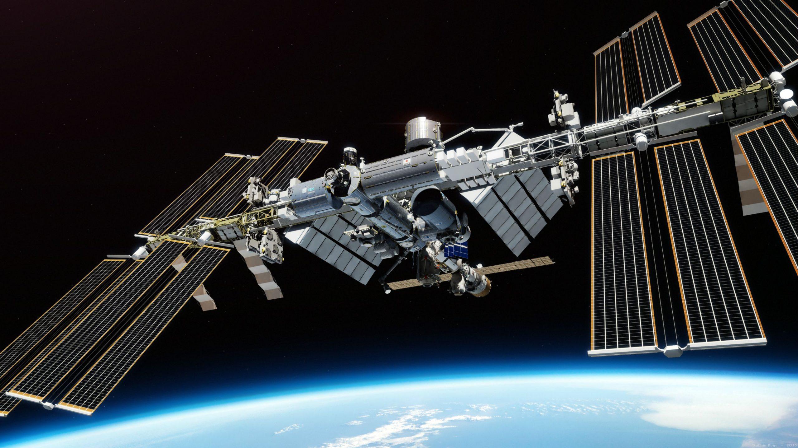 Il DNA non viene alterato dalla permanenza nello spazio