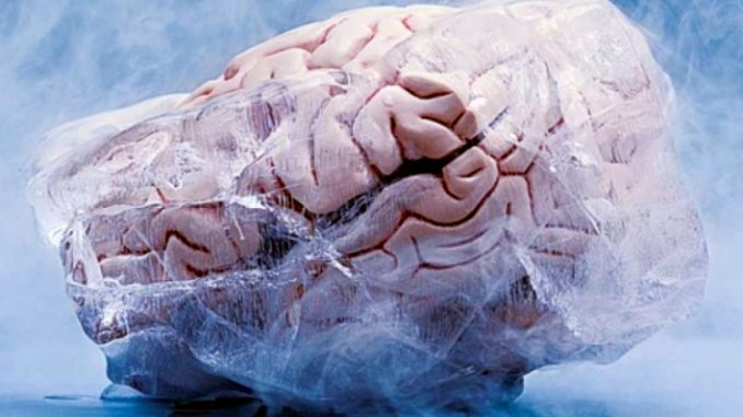 Un giorno scaricheremo i ricordi del cervello in cloud?