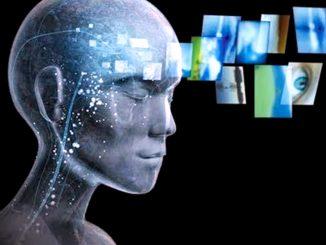 Perché perdiamo capacità cerebrali con l'invecchiamento