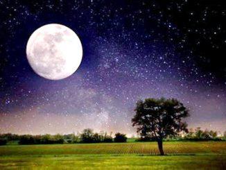 Terra e Luna hanno avuto origine da una ciambella di materia