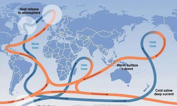 Schema di circolazione del sistema di correnti AMOC. In rosso, le masse d'acqua calda e superficiale, in blu quelle di acqua fredda e profonda.| INTERGOVERNMENTAL PANEL ON CLIMATE CHANGE