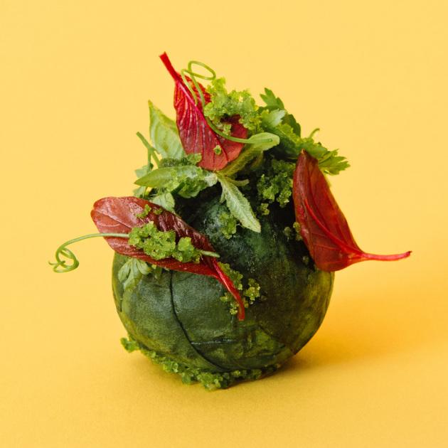 Una polpetta vegetale fatta di verdure di stagione.|SPACE10.IO