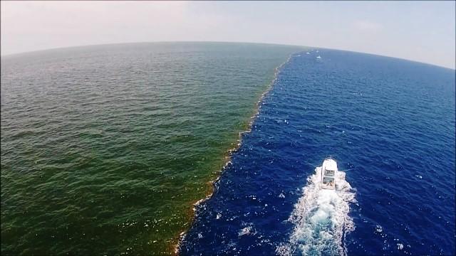 Manca ossigeno in grandi aree dell'Oceano Atlantico