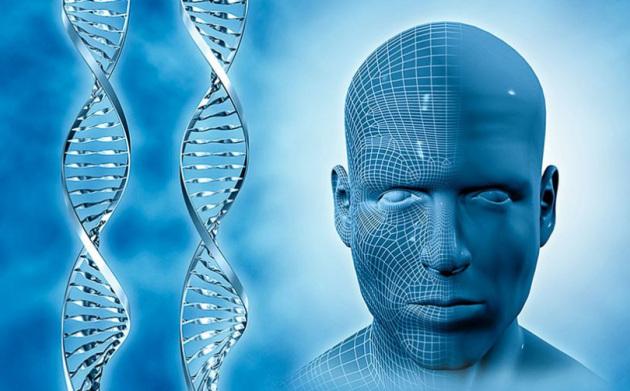 La ricostruzione delle caratteristiche fisiche partendo dai dati genetici è nota come fenotipizzazione del DNA e ha già dato qualche risultato.