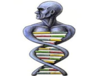 Superare i cento anni di età grazie a una variante del DNA