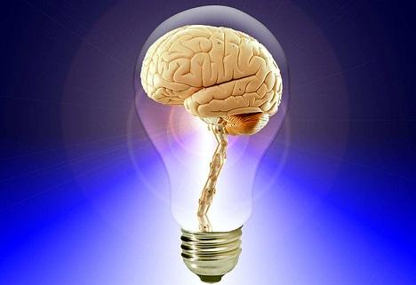 Il cervello invechia perché la sua centrale produce meno energia