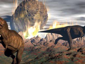 Prestiamo attenzione a non finire come i dinosauri
