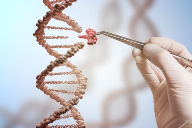 Rappresentazione concettuale di un intervento di editing genetico con la tecnica CRISPR: le forbici molecolari consentono di intervenire con precisione soltanto dove serve.|Shutterstock