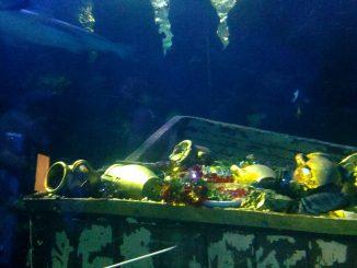 200 tonnelate di oro saltano fuori da un relitto del 1905