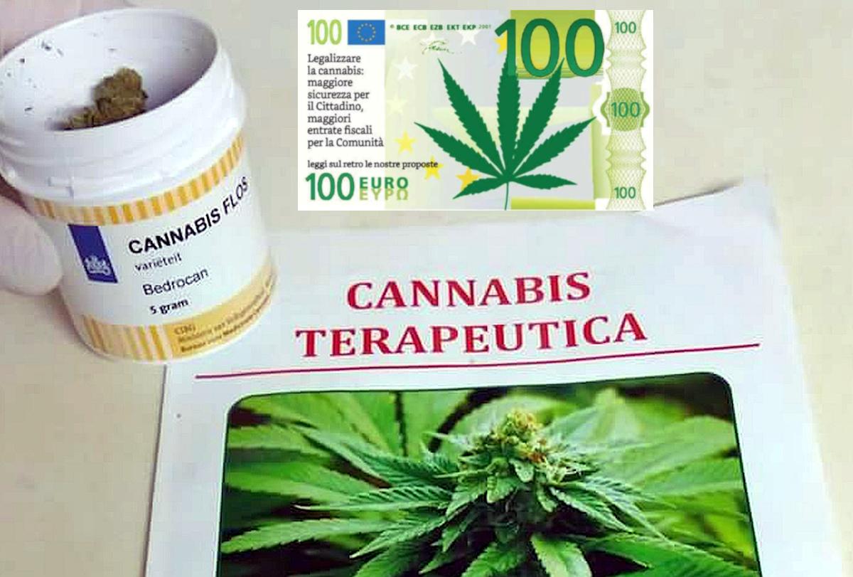 Sfatato il mito che la cannabis abbia effetti terapeutici