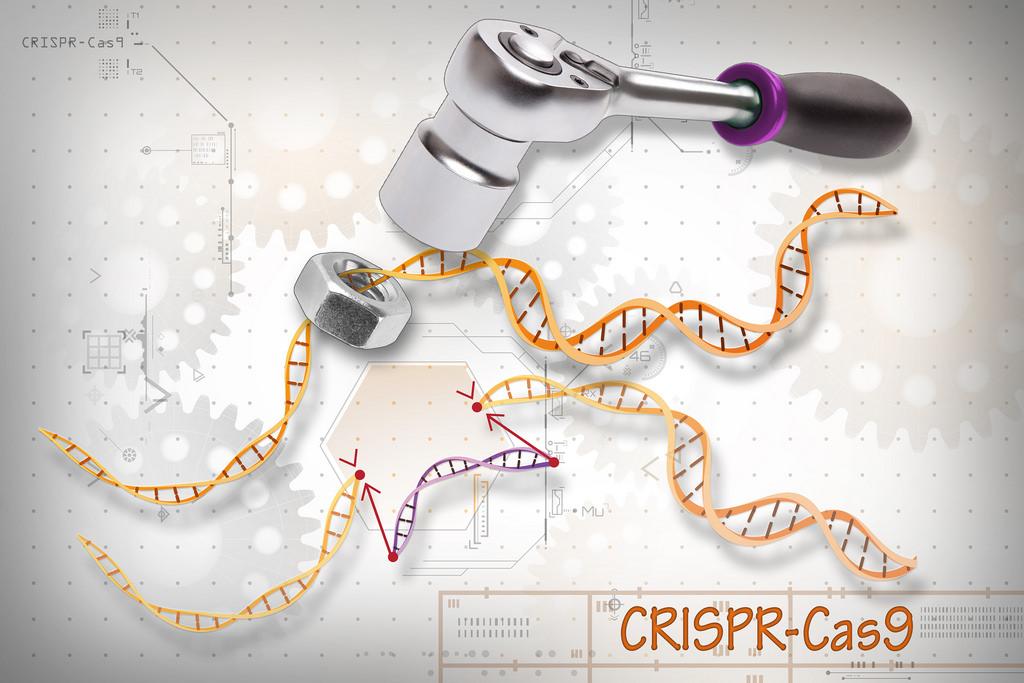 Correggere il DNA degli spermatozoi grazie a una scossa elettrica