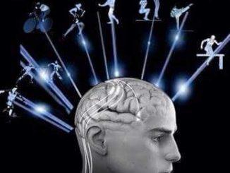 Muoversi, durante il giorno, migliora le prestazioni intellettive