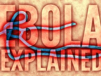 Studi sul virus ebola ne trovano una nuova mutazione