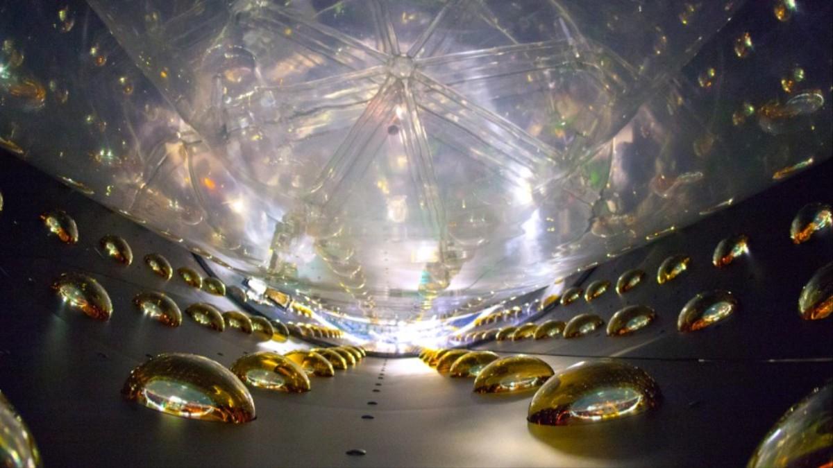 A caccia di iterazioni dei neutrini con rilevatori di argon liquido