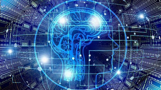 Come il cervello prevede il futuro. Photo by geralt / CC0 Creative Commons
