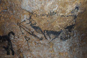 """Pittura rupestre denominata """"scena del pozzo"""" nelle Grotte di Lascaux, in Francia. Crediti: Alistair Coombs"""