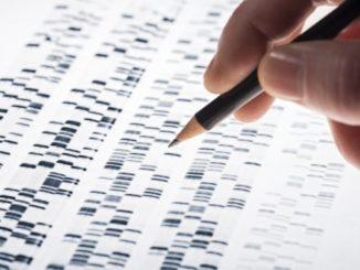 Figli belli e intelligenti con la manipolazione genetica?