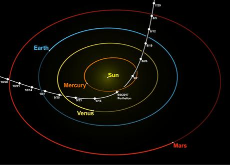 Illustrazione della traiettoria di 'Oumuamua. (Wikimedia Commons)