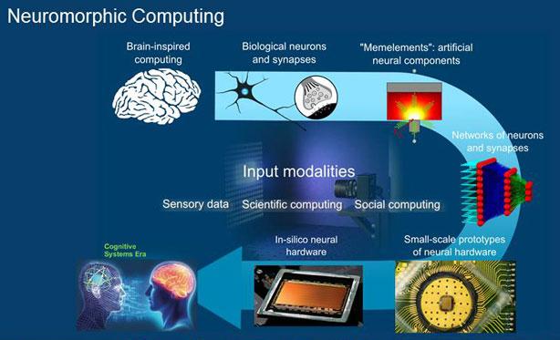 Allo studio i meccanismi neurali umani per l'intelligenza artificiale