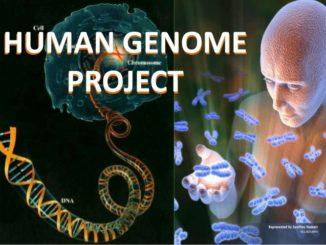 L'Inghilterra fa difendere dai militari il suo progetto sul genoma