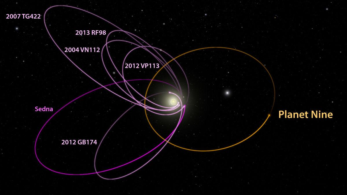 Orbite sballate fuori Nettuno date da un nuovo pianeta