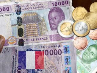 La Francia colonizzatrice economica dell'Africa
