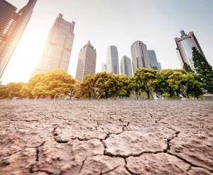 Cambiamenti climatici: il rischio è una discussione non aderente alla realtà scientifica. | Shutterstock