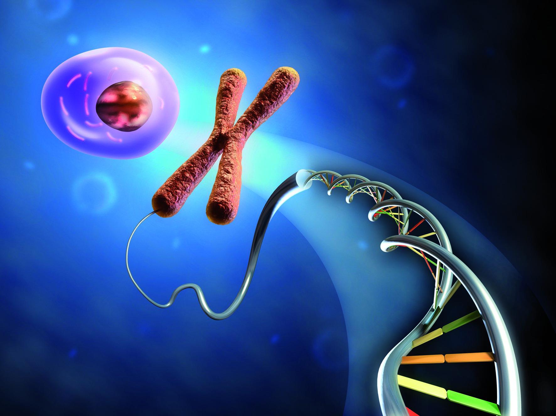 I tumori differiscono a seconda del DNA della persona affetta