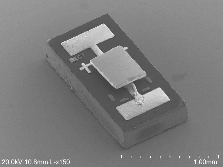 Il fotodiodo a infrarossi delle dimensioni di un granello di riso. Immagine: Linxiao Zhu