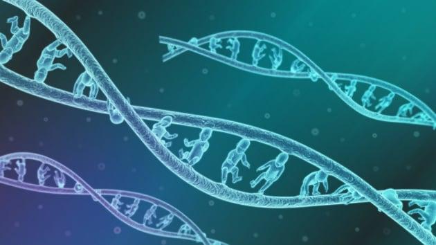 """Editing dell'embrione: e se quelli cercati per davvero fossero gli """"effetti collaterali"""", della mutazione?"""