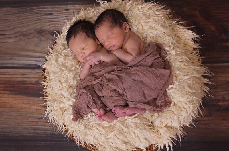 Le gemelline clonate sviluppano meglio l'intelligenza