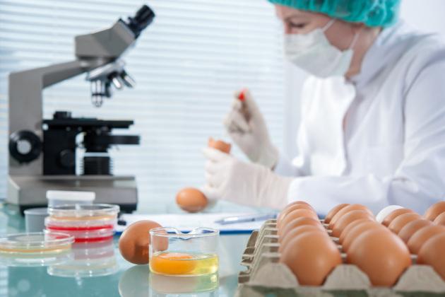 Fabbriche di proteine medicinali, non destinate alla catena alimentare.|Shutterstock