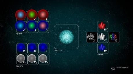 I costituenti fondamentali del modello standard. (Cortesia Daniel Dominguez / CERN)