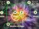"""Dai quark """"charm"""" una nuova realtà fisica della materia"""