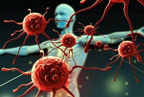 Creati nuovi vaccini dallo studio del sistema immunitario