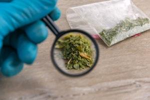 Cannabis Sintetica