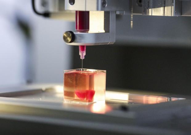 Stampato con successo un cuore artificiale in 3d
