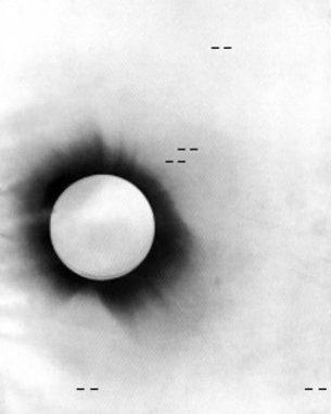 Foto negativa dell'eclissi solare del 1919
