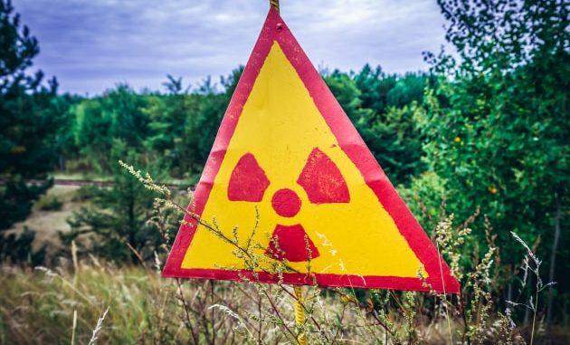 La segnaletica, nella Foresta Rossa di Chernobyl.|Shutterstock