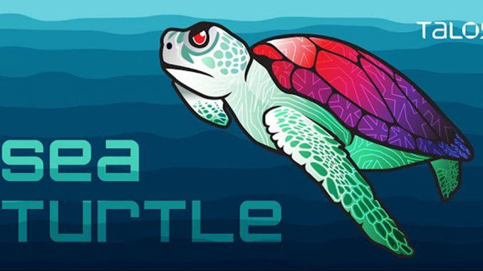Logo dell'operazione Sea Turtle che identifica l'attacco su larga scala ai sistemi dns (immagine: Talos)
