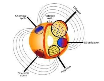 Impressione artistica di una stella Ap rapidamente oscillante (roAp) che ne evidenzia la complessità. La diversità dei fenomeni fisici che si verificano negli strati esterni, rende le stelle roAp banchi di prova ideali per la modellizzazione della fisica stellare. Crediti: Victoria Antoci (Stellar Astrophysics Center, Università di Aarhus).
