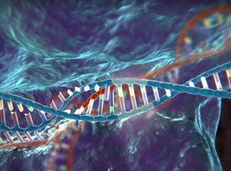 Eliminare il virus HIV grazie a l'editing genetico Crispr-Cas9