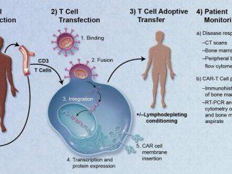 Riprogrammare il DNA delle cellule per curare il cancro