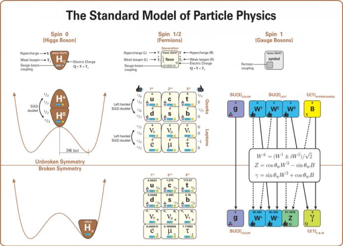 Questo diagramma mostra la struttura del modello standard (in un modo che mostra le relazioni e gli schemi chiave in modo più completo e meno fuorviante rispetto all'immagine più familiare basata su un quadrato 4×4 di particelle).In particolare, questo diagramma descrive tutte le particelle nel Modello Standard (inclusi i loro nomi di lettere, masse, spin, mani, cariche e interazioni con i bosoni di gauge: cioè, con le forze forti ed elettrodebole).Descrive anche il ruolo del bosone di Higgs e la struttura della rottura della simmetria elettrodebole, indicando come il valore di aspettativa del vuoto di Higgs rompa la simmetria elettrodebole e come le proprietà delle restanti particelle cambino di conseguenza. Si noti che il bosone Z si accoppia ai due quark e ai leptoni e può decadere attraverso i canali del neutrino. – LATHAM BOYLE E MARDUS DI WIKIMEDIA COMMONS