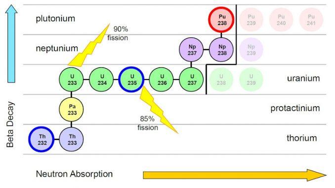 Evoluzione di alcuni isotopi pesanti se sottoposti a bombardamento neutronico.