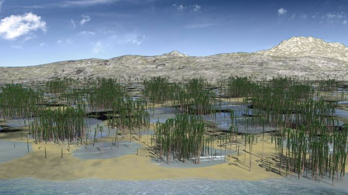 """Ecco come doveva apparire la foresta di alberi licopsidi dello Xinhang (credito: DOI: <a href=""""https://www.cell.com/current-biology/fulltext/S0960-9822(19)30780-8"""" rel=""""nofollow"""" data-aalisten=""""1"""">10.1016/j.cub.2019.06.053</a>)"""
