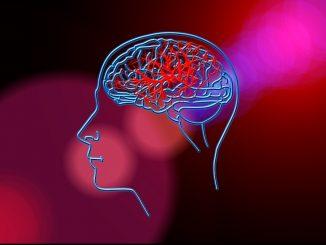Dopo 100 anni una nuova ipotesi sul funzionamento dei neuroni